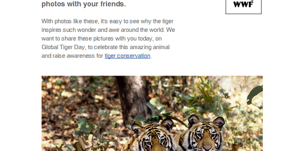 WWF - Happy Tiger Day