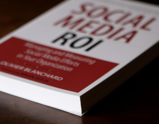 "The 10 most popular insights from ""Social Media ROI""."